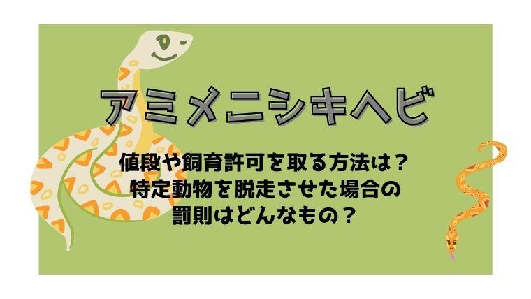 アミメニシキヘビの値段や飼育許可を取る方法!特定動物を脱走させた場合の罰則は?