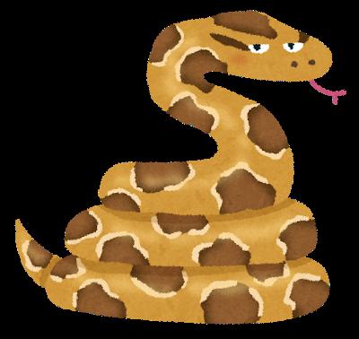 ニシキヘビ脱走